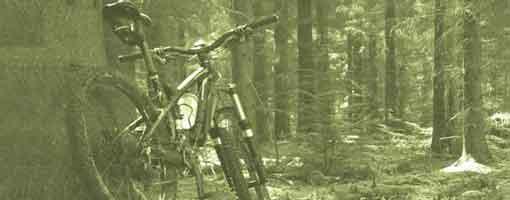 Torrevieja Alquiler de Bicicletas